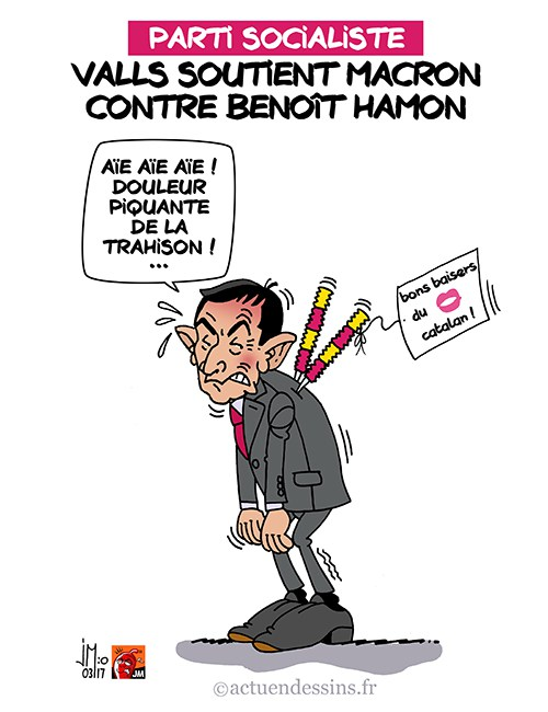 humour - Page 2 Valls-10