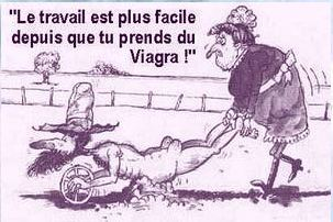 humour - Page 21 Viagra10