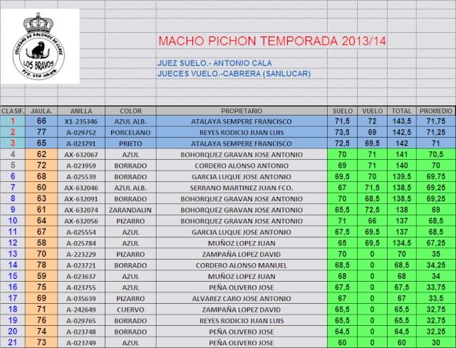 CLASIFICACIÓN FINAL MACHOS PICHONES TEMPORADA 2014 Pichon10