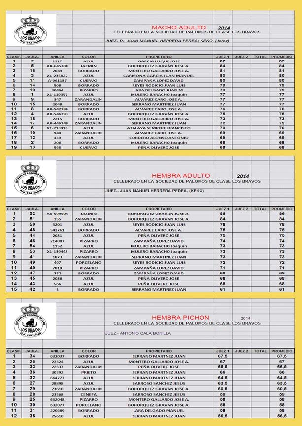 RESULTADOS CONCURSO LOCAL 2014 Result10
