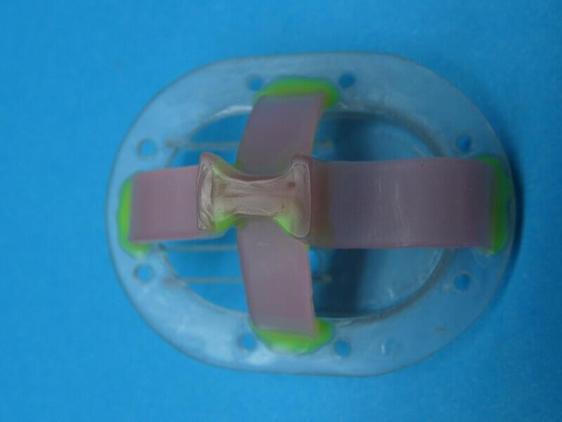 Fabrication de deux crépines pour Tamar - C.A.O. & Métallurgie  Crepin54