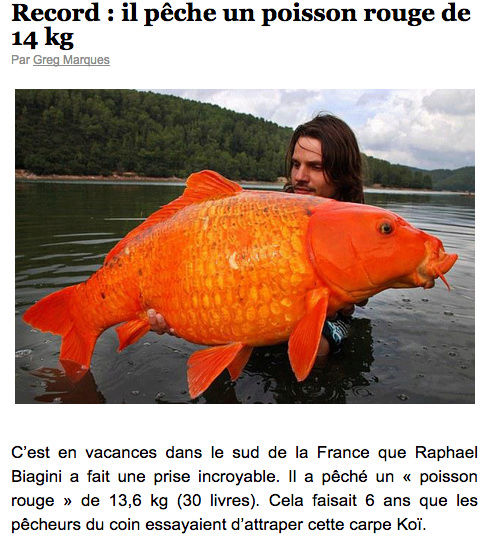 pêche  record Captu153