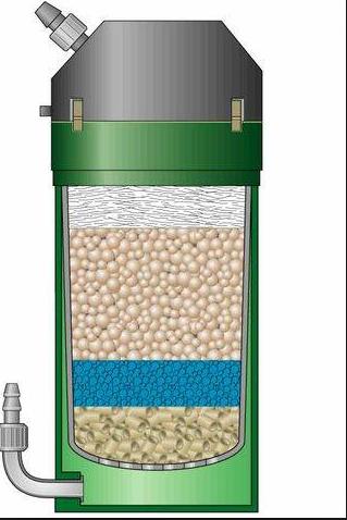 bactérie ou pas après changement d'eau Captur58