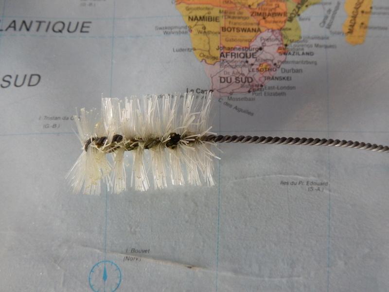 Mes Débuts dans l'aquariophilie; Juwel Trigon 190L - Page 2 Dscn0410