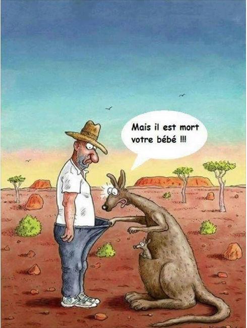 Le coin Humour  - Page 4 Par_d128