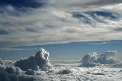 Dans le cloud. Lion10