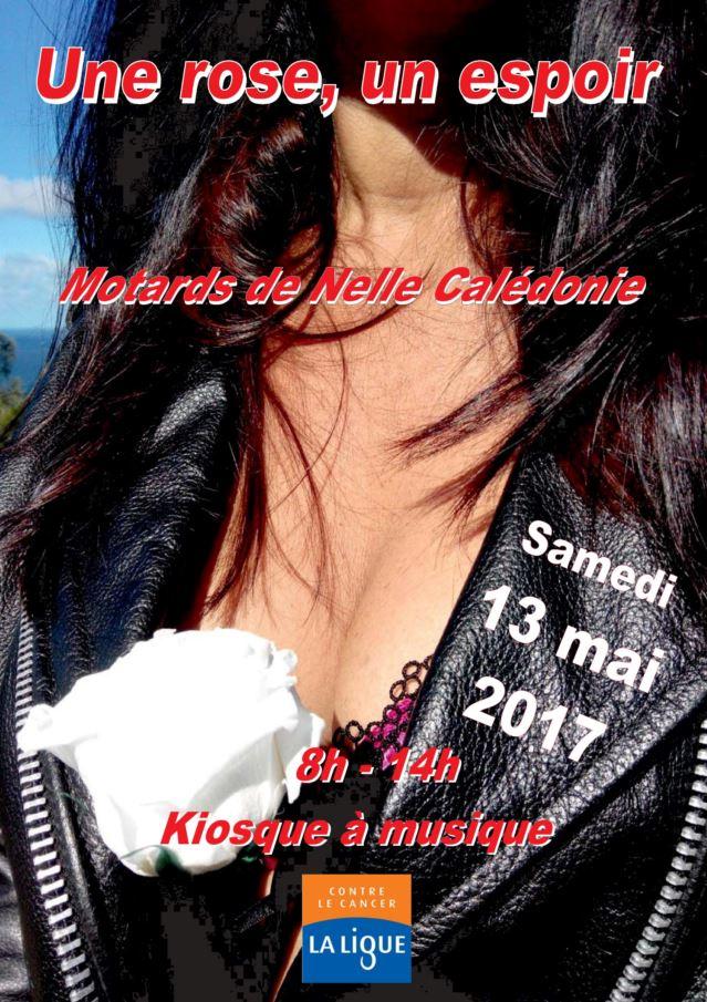 UNE ROSE UN ESPOIR 2015 : Samedi 6 juin  Captur10