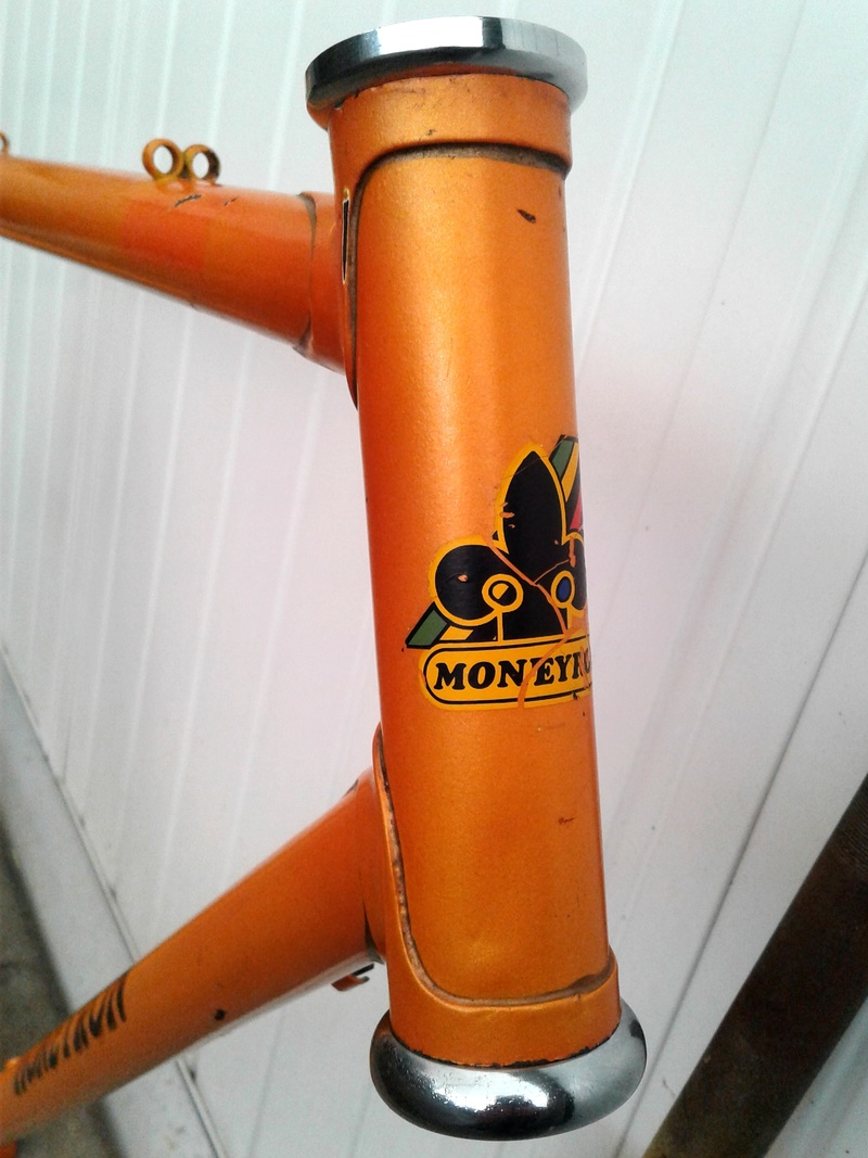 CX Moneyron fin 70 Moneyr15