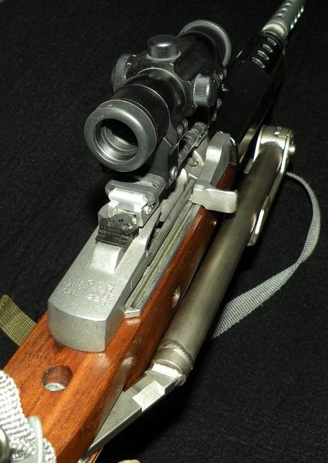 Mini 14 ruger Dscn2336