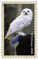 """In den USA erscheinen bald erste Briefmarken zu """"Harry Potter"""" 20131115"""