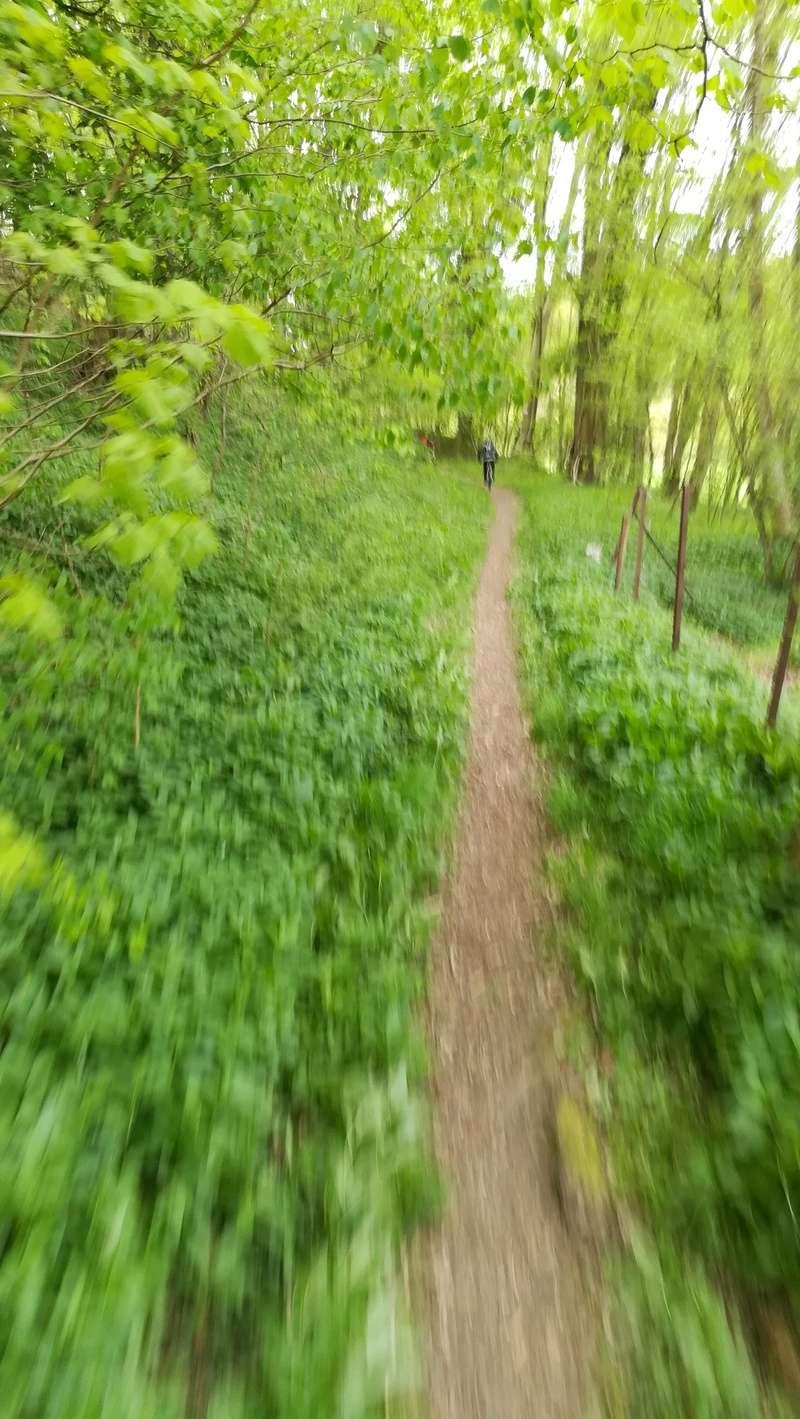 La renardière - Lyons la Forêt Img_2022