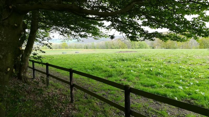 La renardière - Lyons la Forêt Img_2024