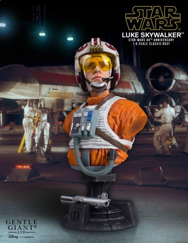 Gentle Giant - Luke Skywalker (X-Wing Pilot) Star Wars 40th  Captur18
