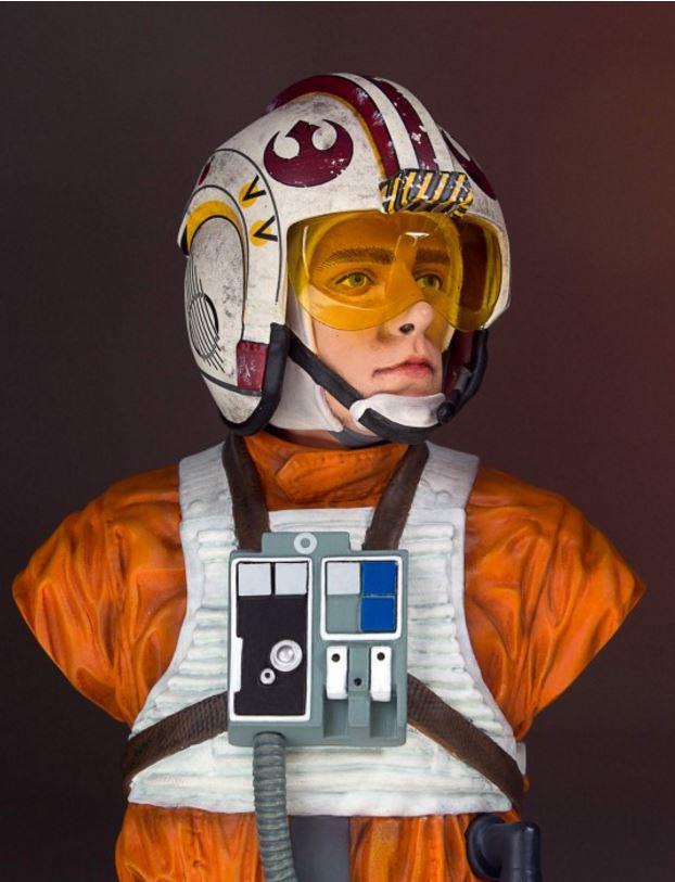 Gentle Giant - Luke Skywalker (X-Wing Pilot) Star Wars 40th  Captur19