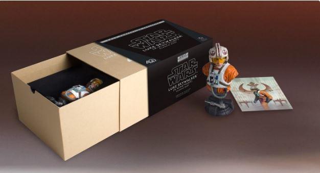 Gentle Giant - Luke Skywalker (X-Wing Pilot) Star Wars 40th  Captur21