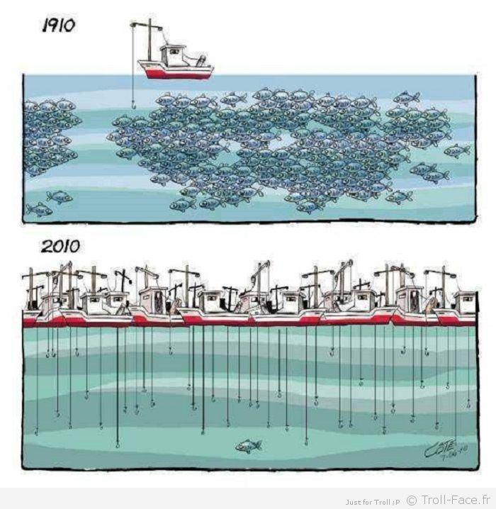 Des pêches non déclarées identifiées avec Google Earth Peche-10