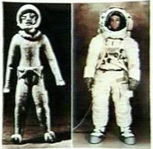 Représentations préhistoriques supposés d'aliens et d'OVNI Ufo21110