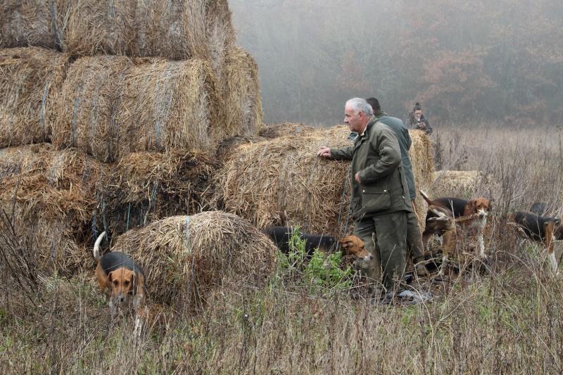 Compte rendu rallye du bois des chevreaux sainson 2013 2014 Img_4115