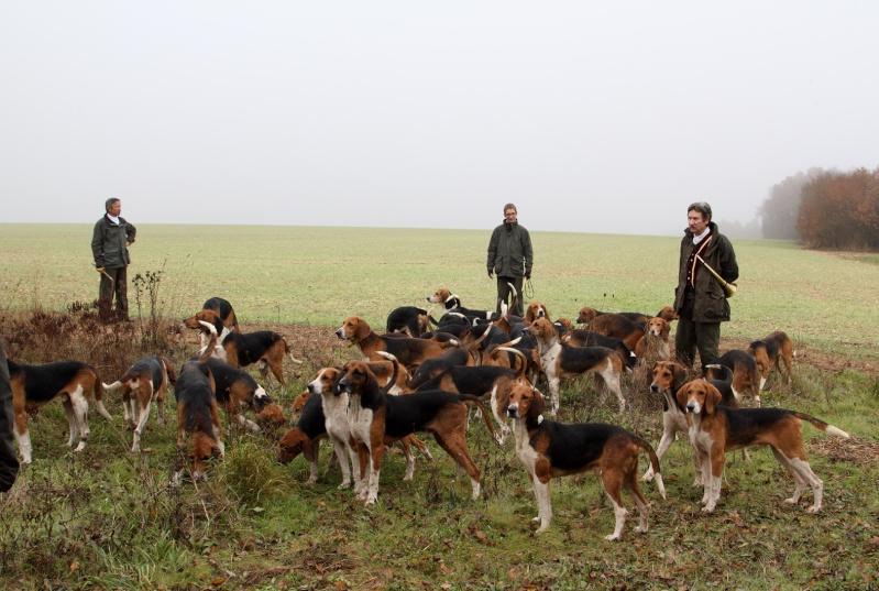 Compte rendu rallye du bois des chevreaux sainson 2013 2014 Img_4116