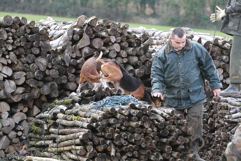Compte rendu rallye du bois des chevreaux sainson 2013 2014 Img_4514