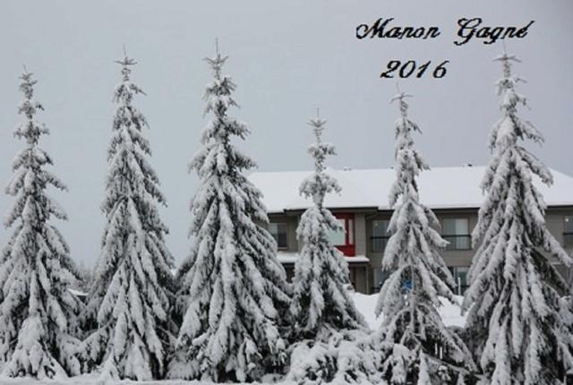 Hiver 2016 Québec Neige-12