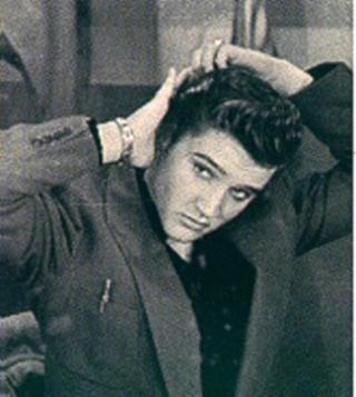 Décalage d'instantanés - Page 12 Elvis-10