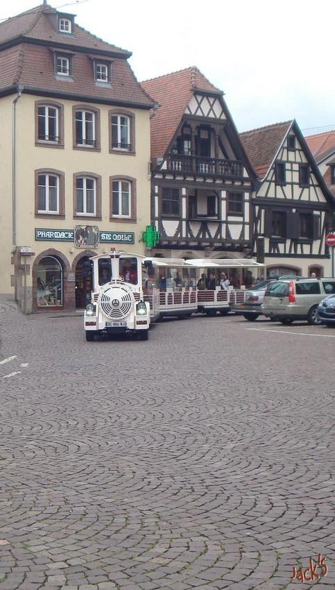 Petit train touristique d'Obernai  Dsc05710