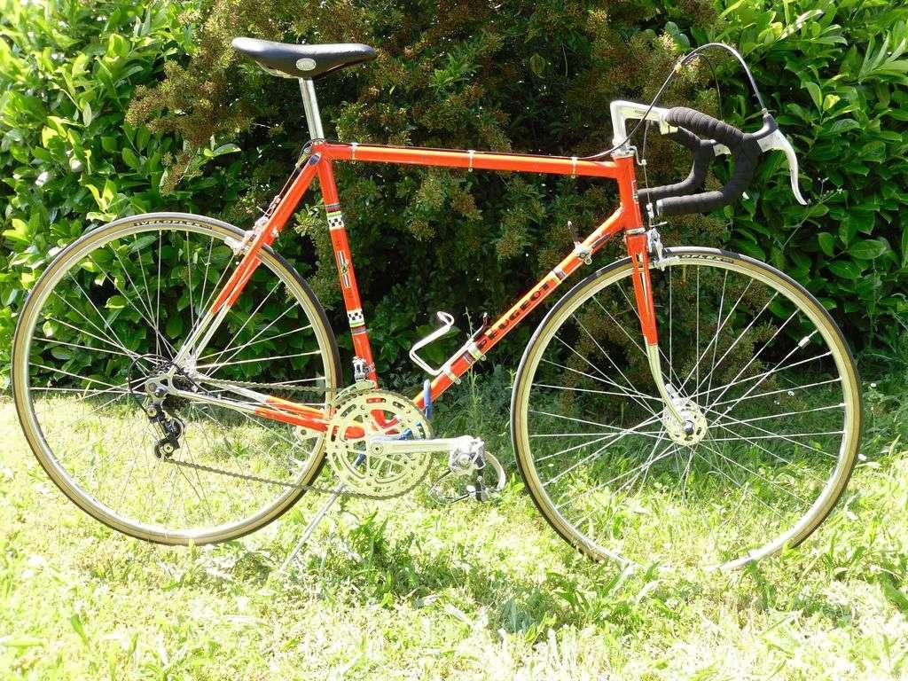 Peugeot PX10 Sam_4110