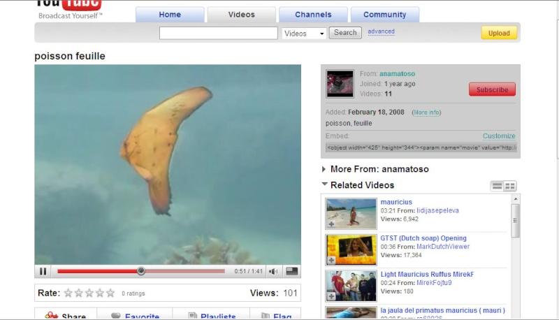 Insertion de vidéo sur le forum Editio13