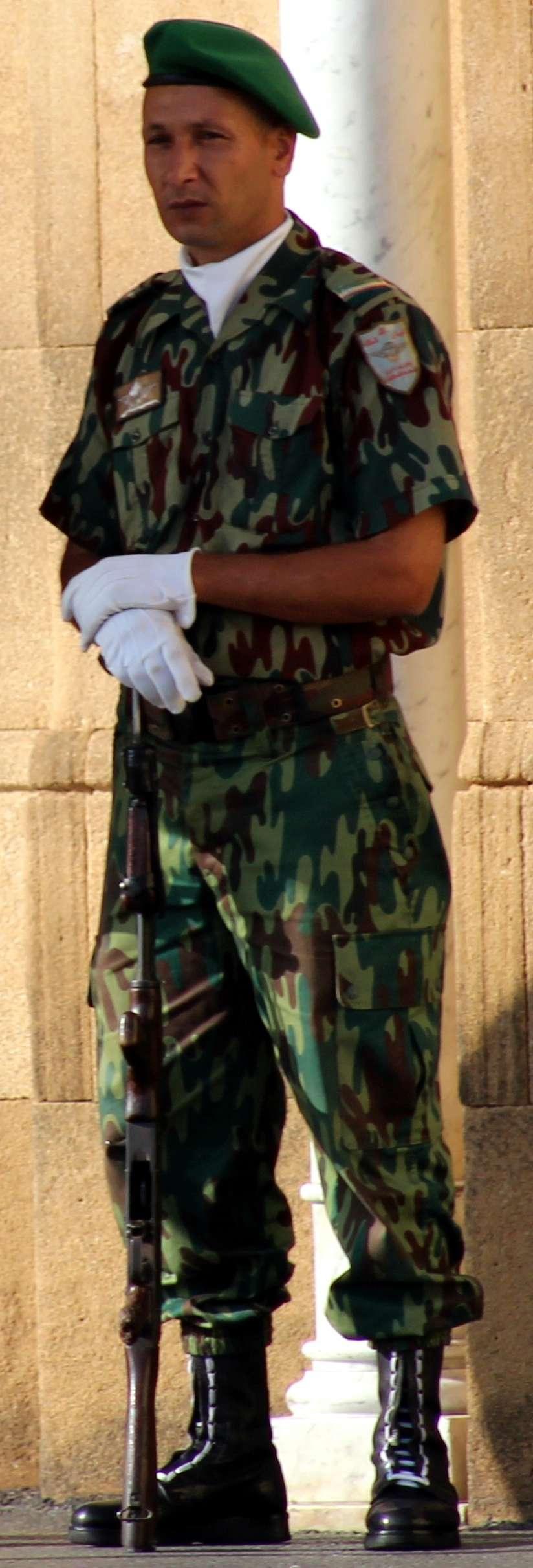 Parachutistes Militaires Marocains / Moroccan Paratroopers - Page 13 Clipb133