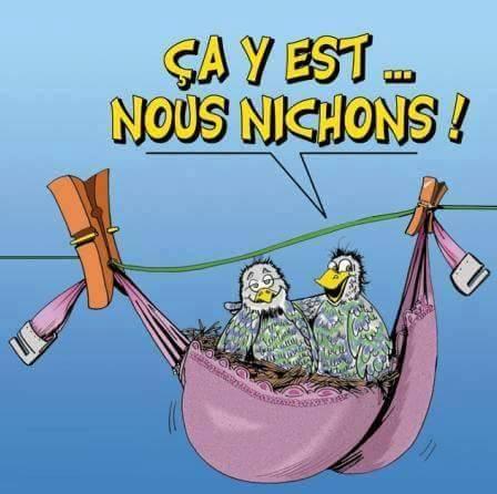 Humour en image du Forum Passion-Harley  ... - Page 12 Niche10