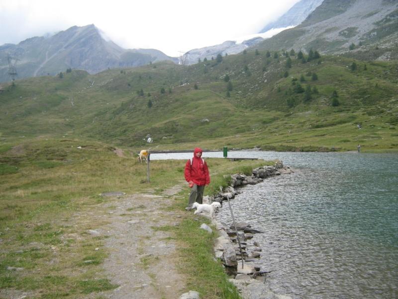 Chipie en goguette au Simplon et aux grand lacs... Img_4730