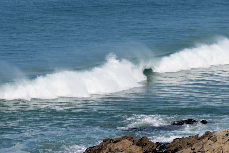 presqu'île  de Quiberon  côte sauvage  Img_7712