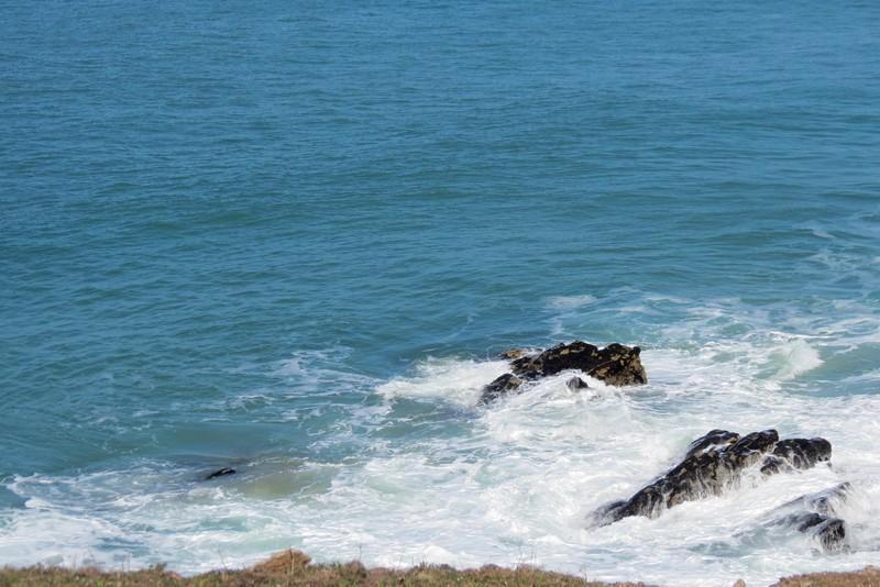 presqu'île  de Quiberon  côte sauvage  Img_7713