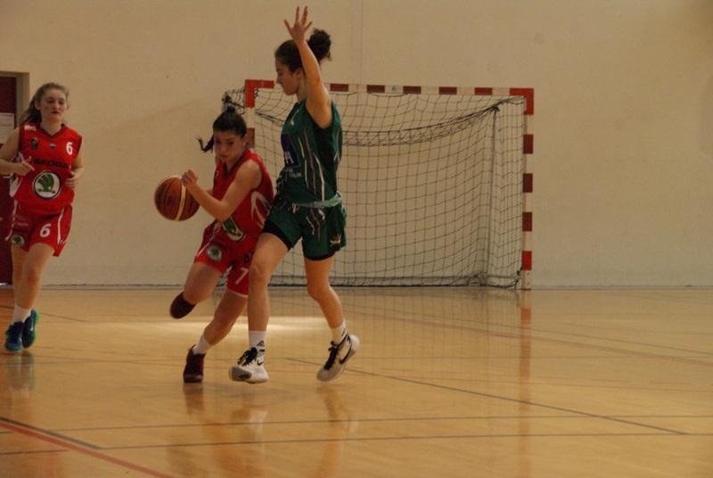 le SAC  et le Basket  - Page 12 Dsc00111