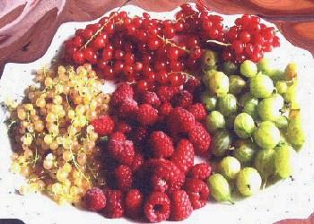 succhi di frutta benefici 110