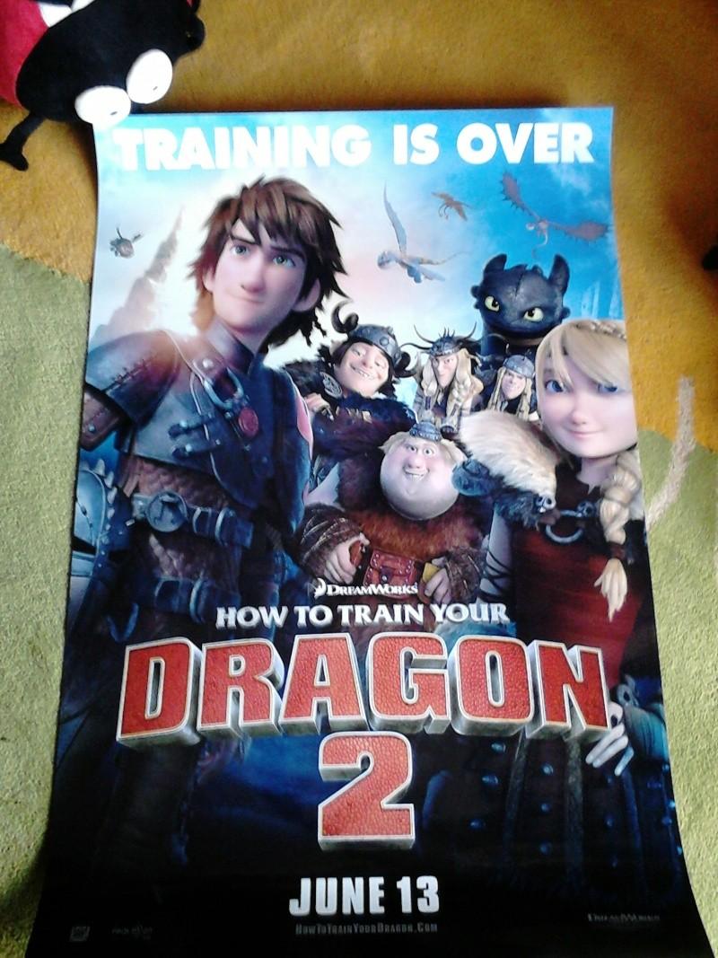 La collection Dragons de Auro  Dsc_0032
