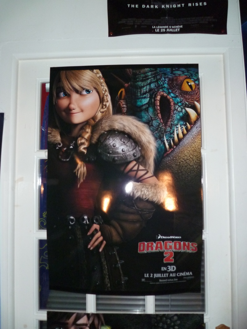La collection Dragons de Auro  P1010517