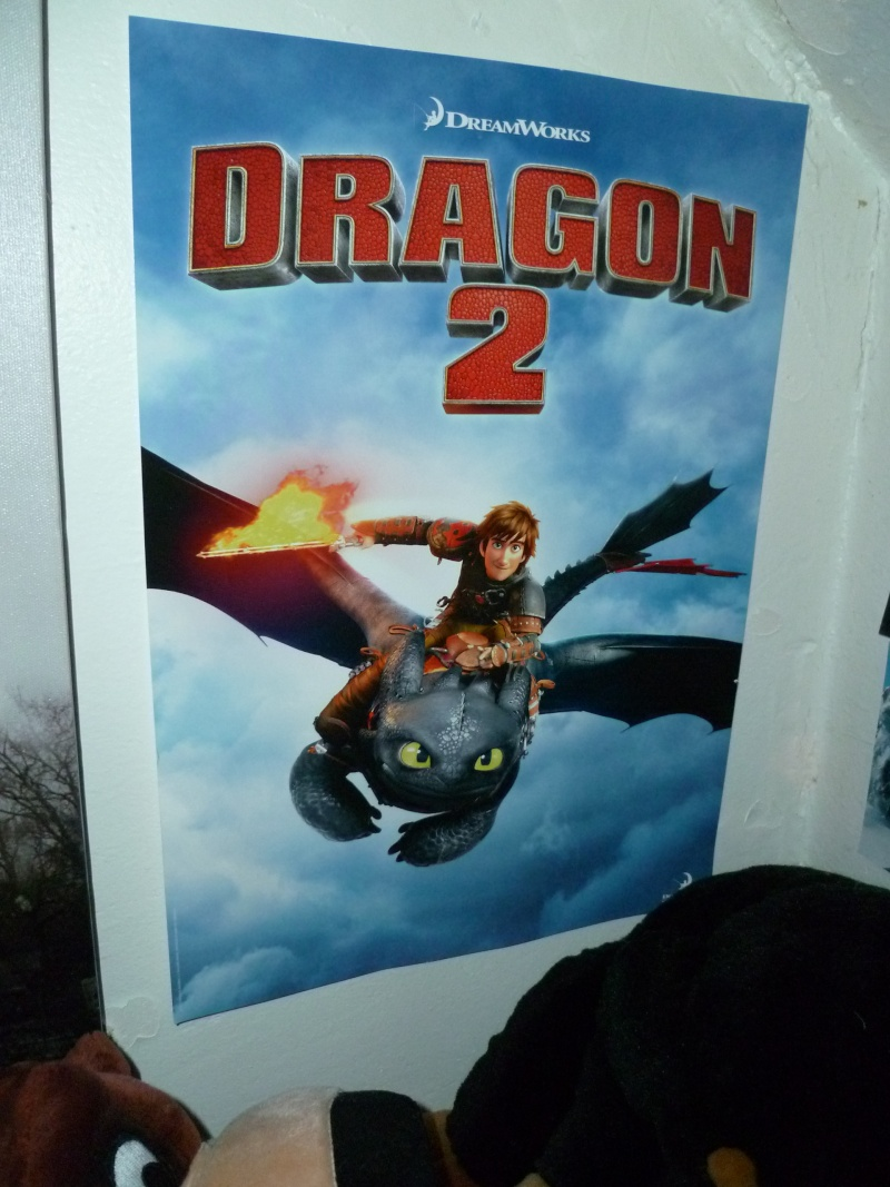 La collection Dragons de Auro  P1010520