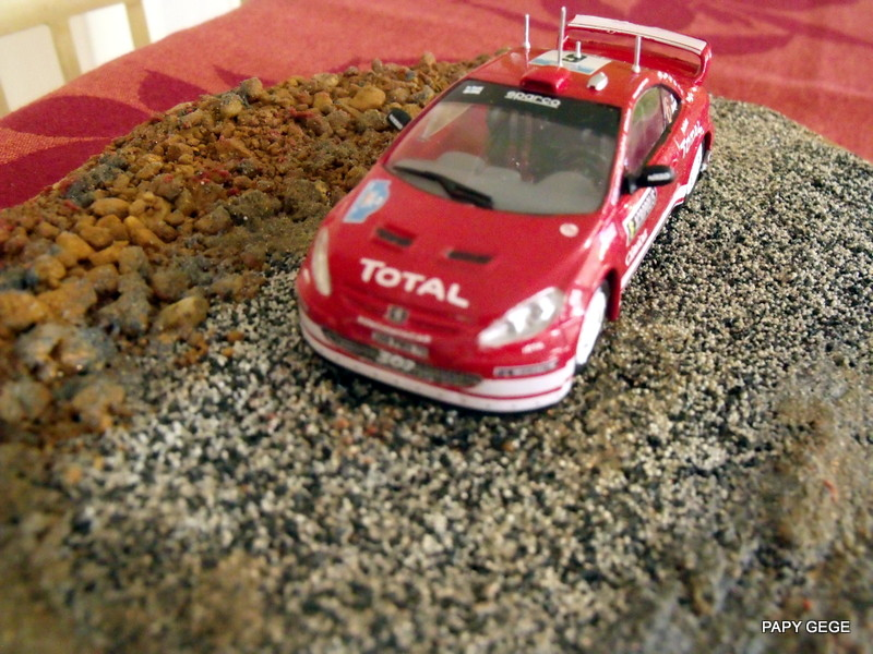 Rallye championship Subaru WRC / Xara WRC / 307 WRC 1/43 HELLER - Page 2 21-dsc10