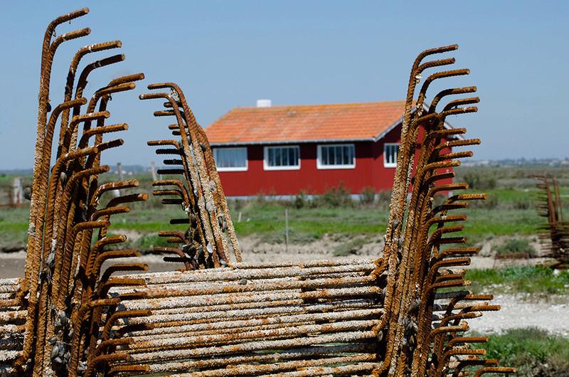 Les cabanes ostréicoles Dsc_6131