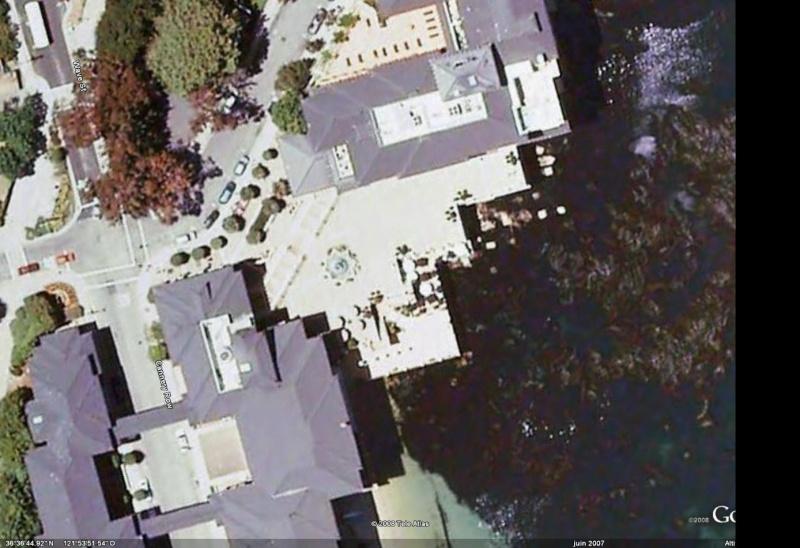 """Défi""""les dauphins""""à Monterey, Californie Dauphi11"""