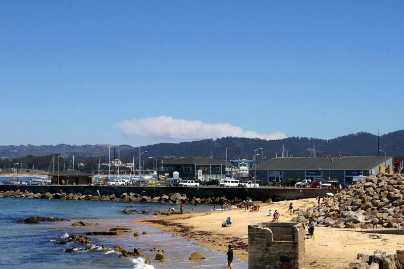 """Défi""""les dauphins""""à Monterey, Californie Mont410"""