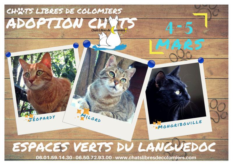 Week-end adoptions aux Espaces Verts du Languedoc le 4 et 5 mars Ja_evl10