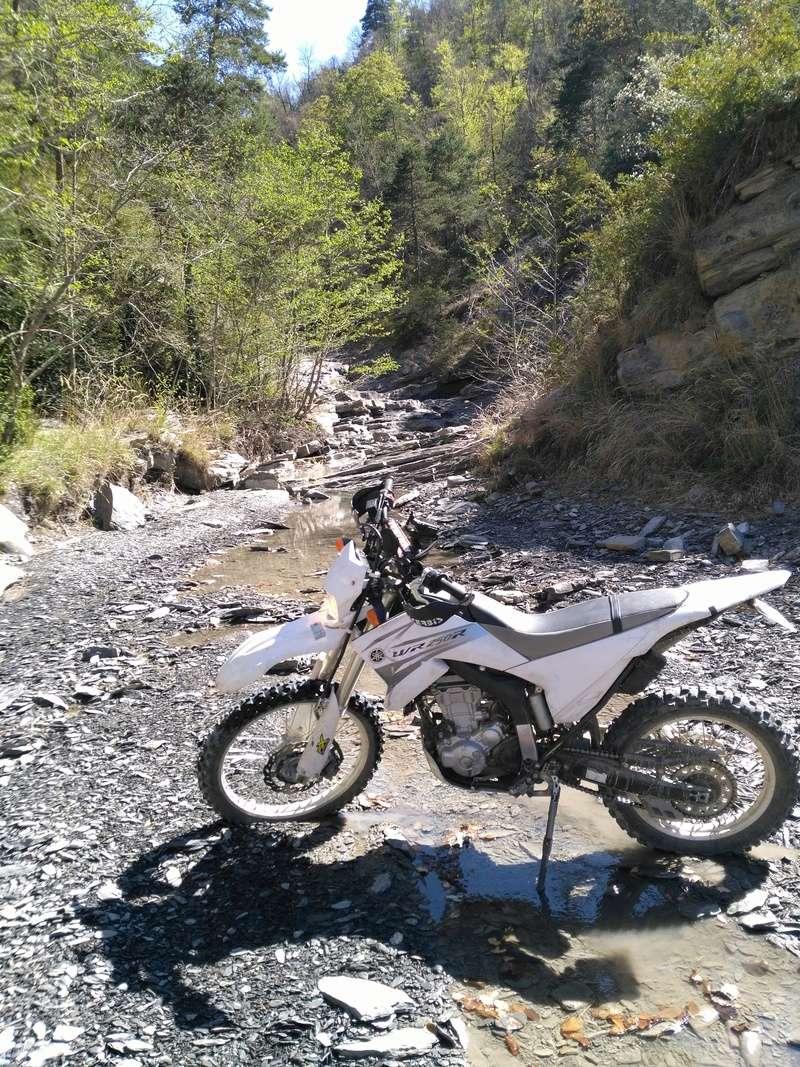 Retour sur ma Yamaha WR 250 R Img_2022