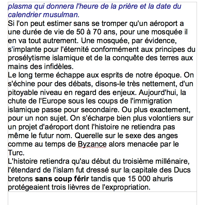 La mosquée de Nantes. M2_tif10