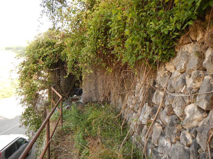 Le jardin de Foix Porte_10