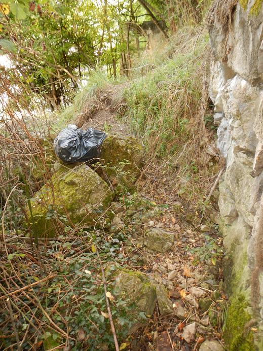 Le jardin de Foix Rampe_10