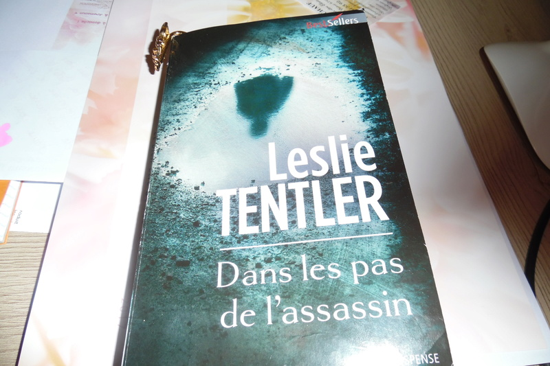 Les thrillers - Page 8 Sam_0810
