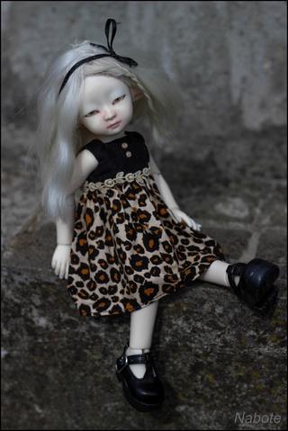 Nab's world. Oneida (Mini Ingénue) Img_9914